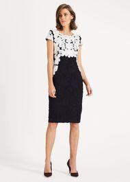 Catheleen Tapework Dress