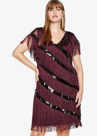Lottie Fringe Dress