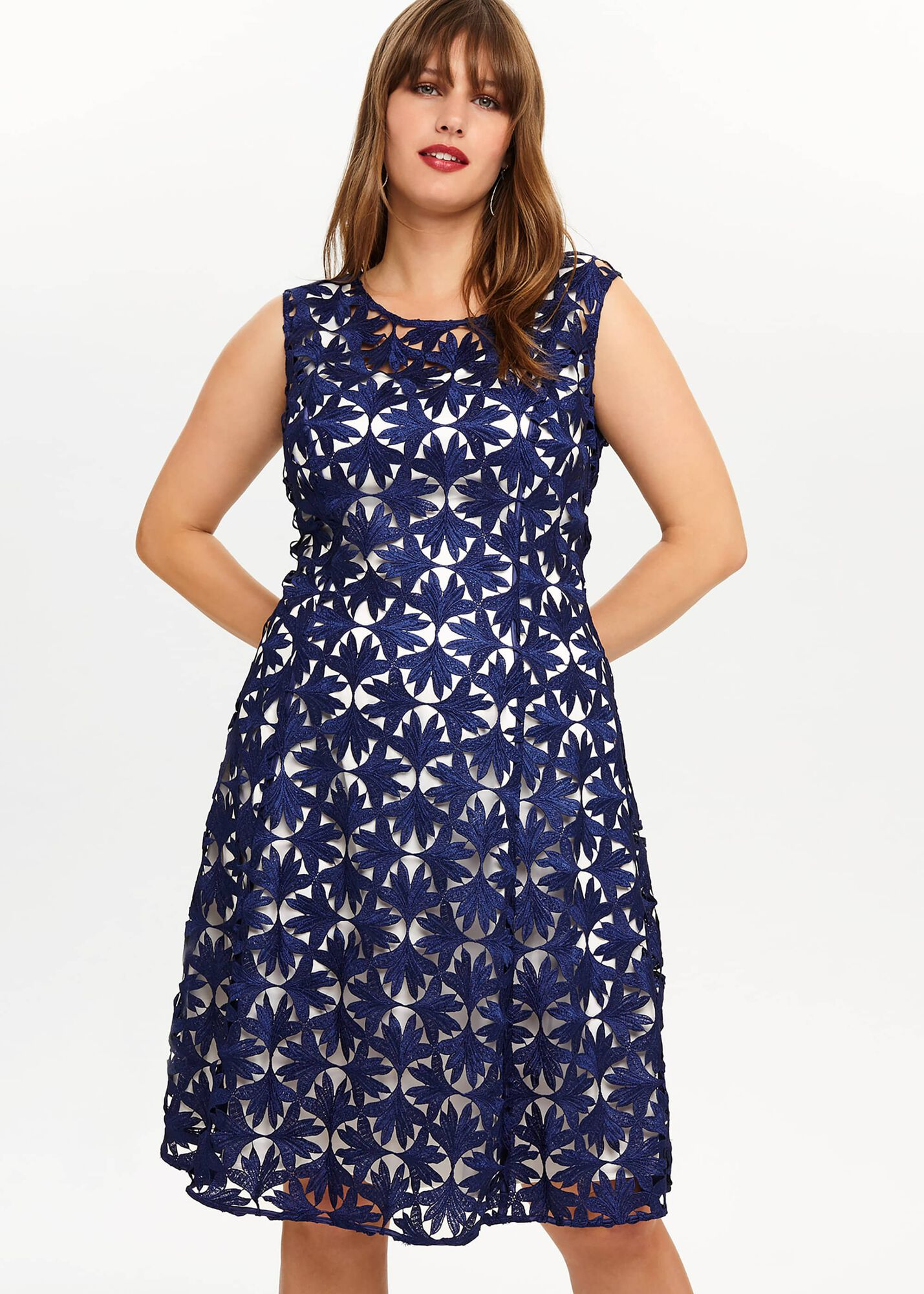 Lilah Lace Dress | Phase Eight | Phase Eight