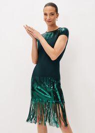 Ferne Sequin Fringe Knitted Dress