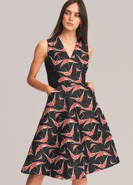 Delaphine Jacquard Dress