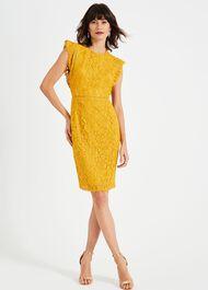 Primrose Lace Dress