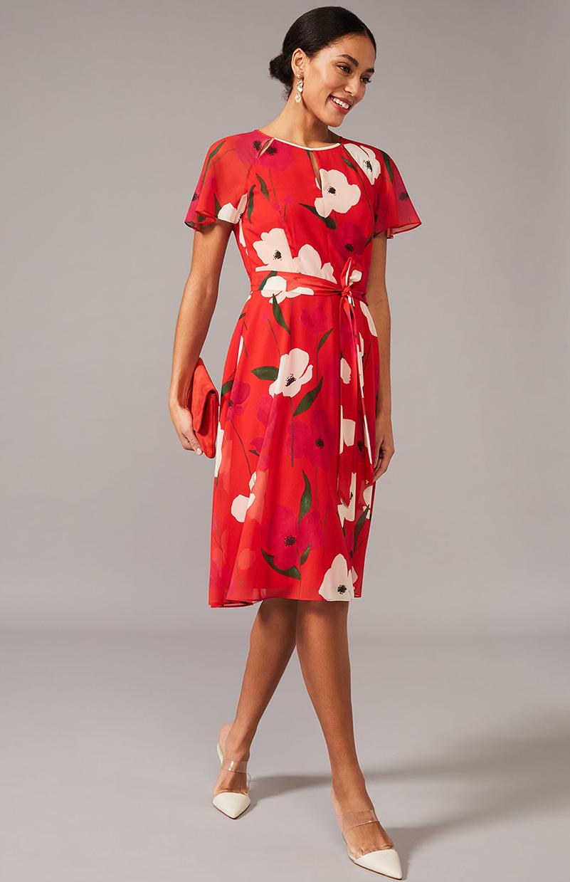 Lou-Poppy Printed Chiffon Dress
