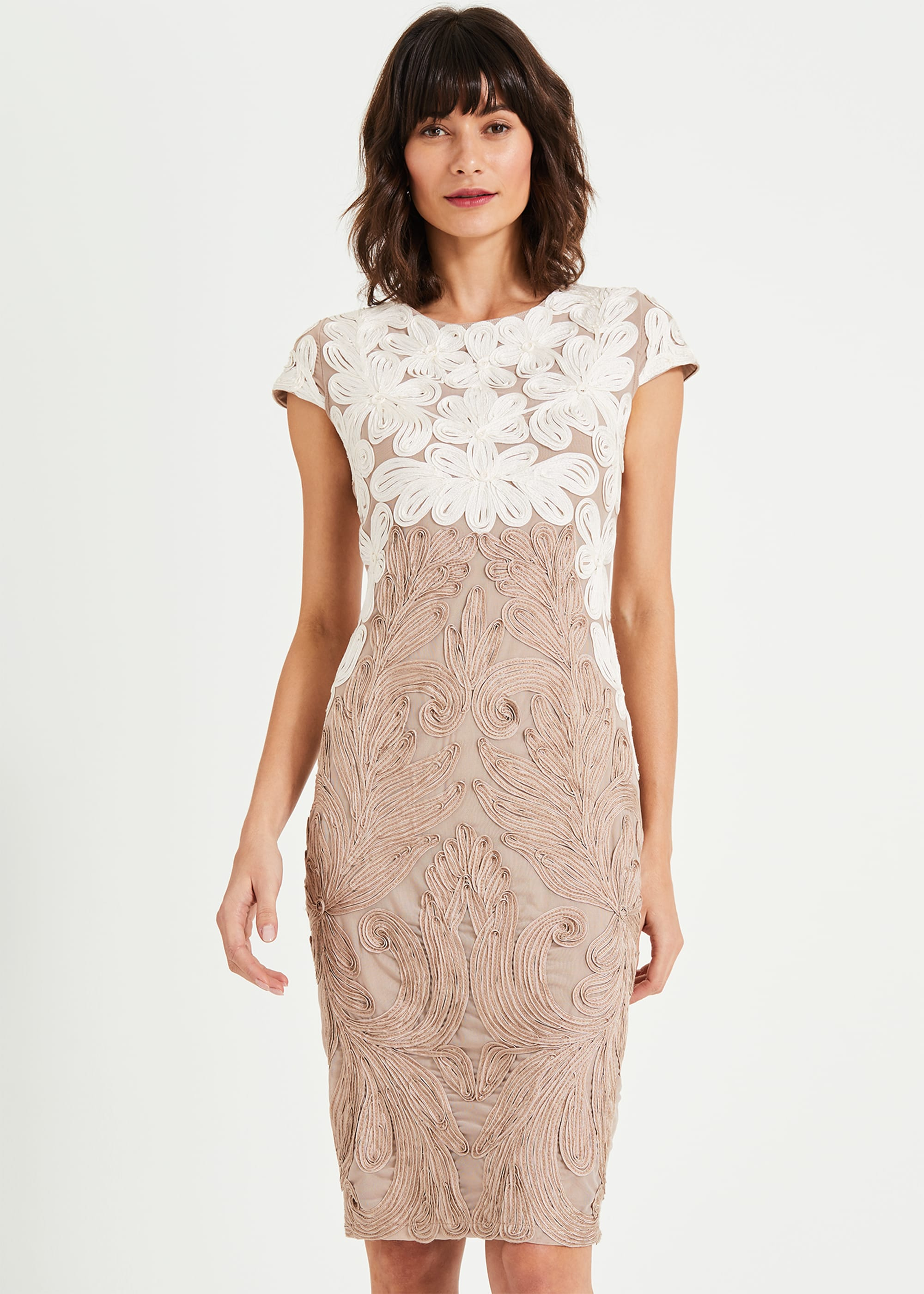 Phase Eight Women Catheleen Tapework Lace Dress