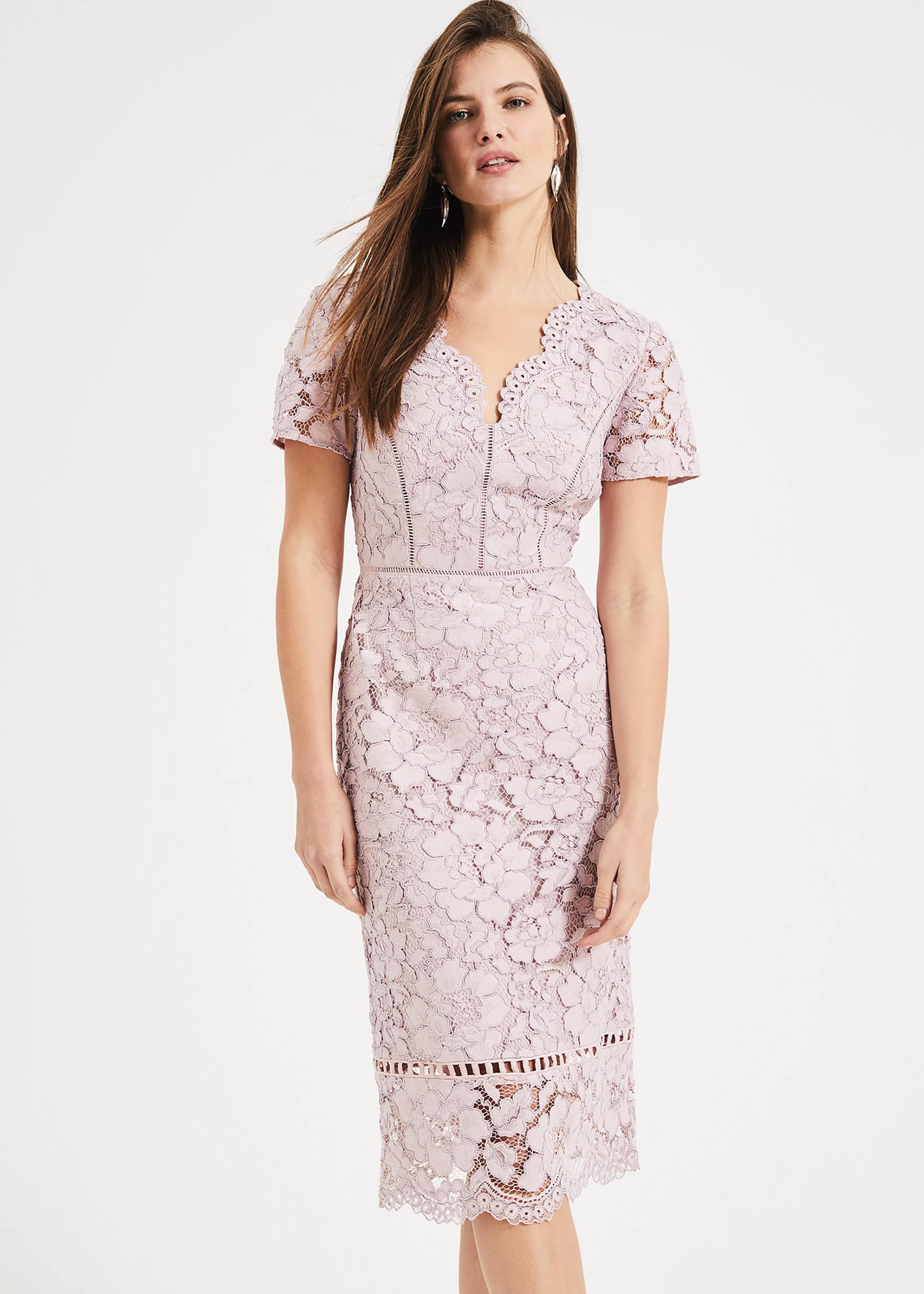 Phase Eight Women Trinity Corded Lace Dress